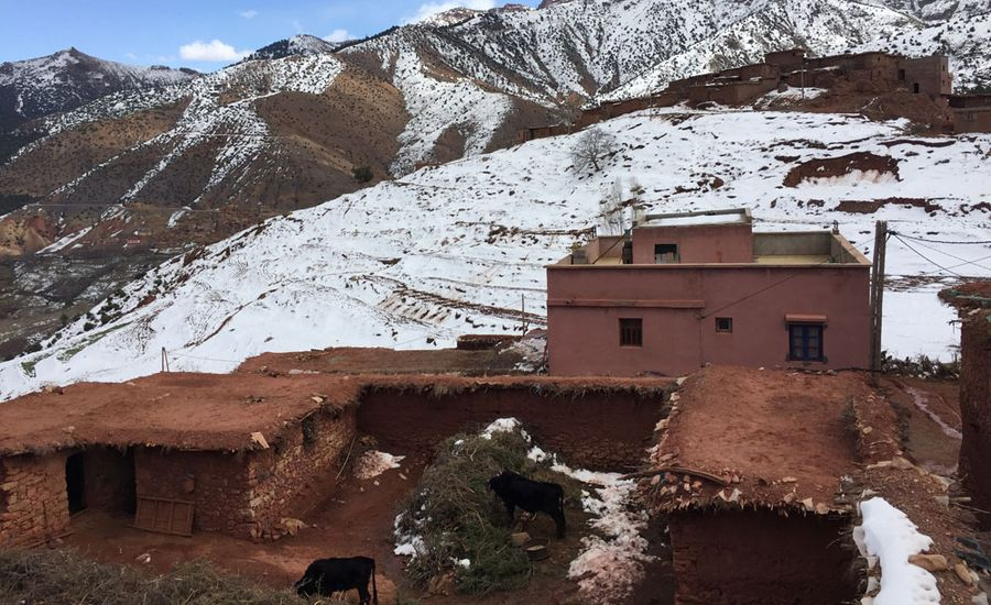 Day trip to the Atlas mountains and berber villages from Marrakech with typical lunch